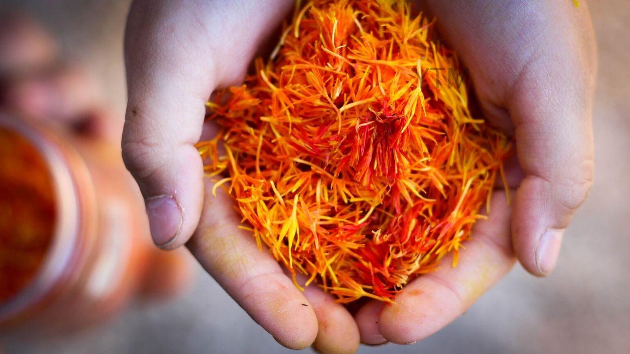 Best Saffron Brand During Pregnancy by Shweta Sharma